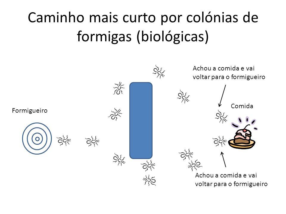 Caminho mais curto por colónias de formigas (biológicas) Formigueiro Achou a comida e vai voltar para o formigueiro Comida Achou a comida e vai voltar para o formigueiro