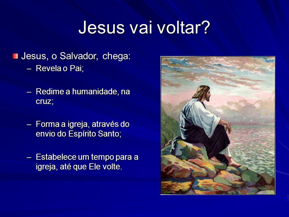 Jesus vai voltar? Jesus, o Salvador, chega: –Revela o Pai; –Redime a humanidade, na cruz; –Forma a igreja, através do envio do Espírito Santo; –Estabe