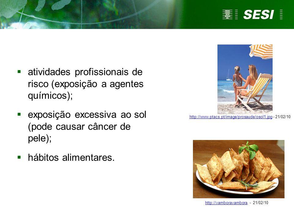  atividades profissionais de risco (exposição a agentes químicos);  exposição excessiva ao sol (pode causar câncer de pele);  hábitos alimentares.