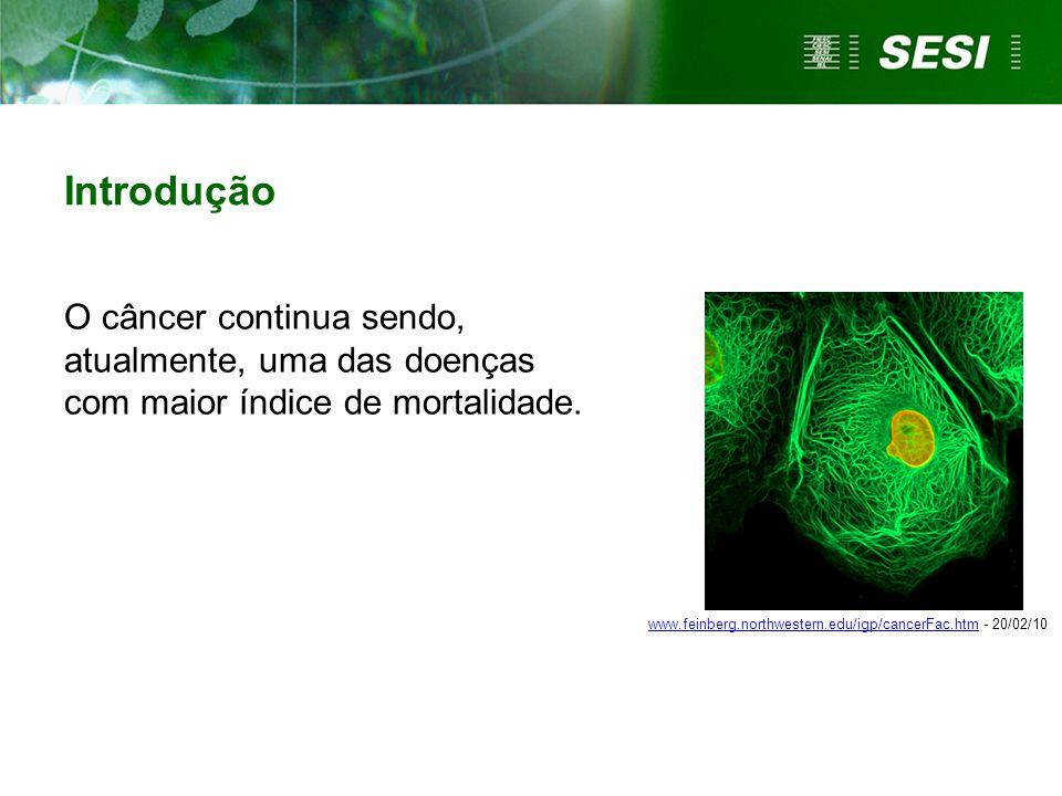 Introdução O câncer continua sendo, atualmente, uma das doenças com maior índice de mortalidade. www.feinberg.northwestern.edu/igp/cancerFac.htmwww.fe