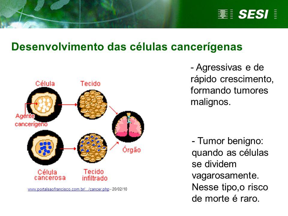 As causas de câncer são variadas:  Externas Relacionam-se ao meio ambiente e aos hábitos ou costumes próprios de um ambiente social e cultural.