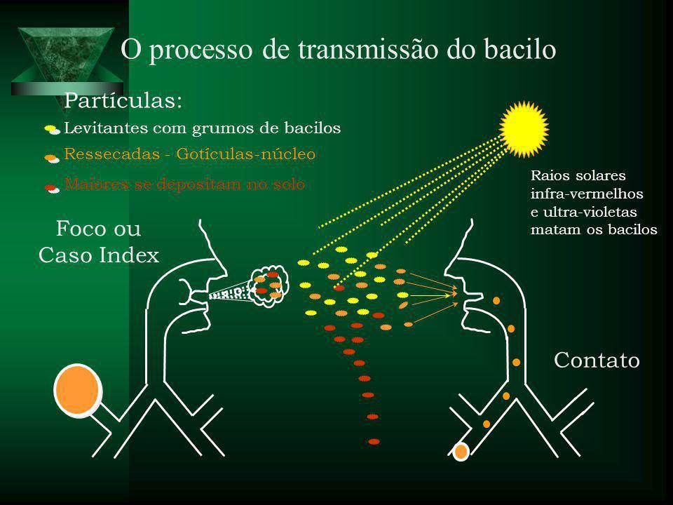 O processo de transmissão do bacilo Partículas: Levitantes com grumos de bacilos Maiores se depositam no solo Ressecadas - Gotículas-núcleo Raios solares infra-vermelhos e ultra-violetas matam os bacilos Foco ou Caso Index Contato