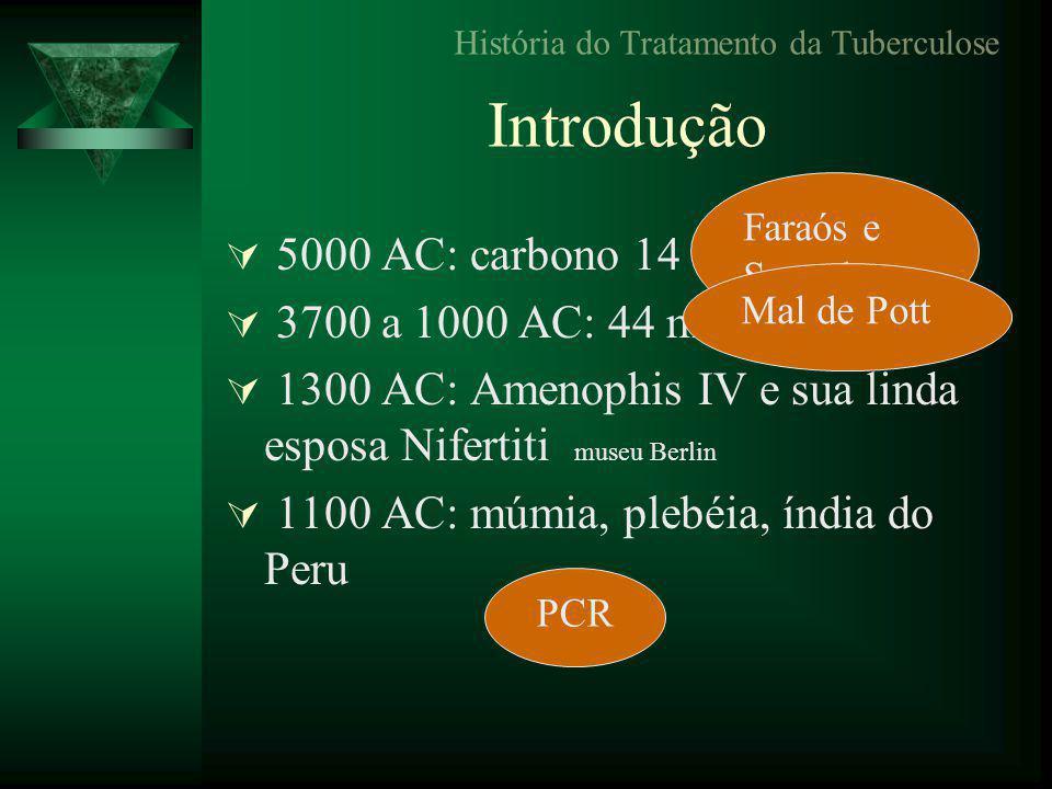Introdução  5000 AC: carbono 14 - esqueletos  3700 a 1000 AC: 44 múmias, Tebas  1300 AC: Amenophis IV e sua linda esposa Nifertiti museu Berlin  1100 AC: múmia, plebéia, índia do Peru História do Tratamento da Tuberculose Faraós e Sacerdotes Mal de Pott PCR