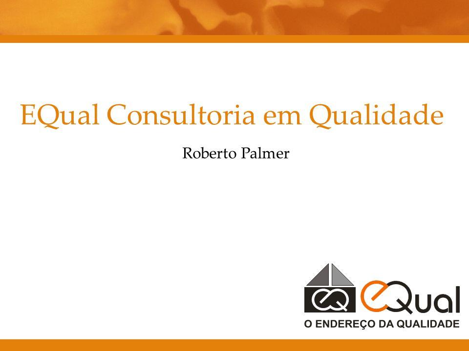 EQual Consultoria em Qualidade Roberto Palmer
