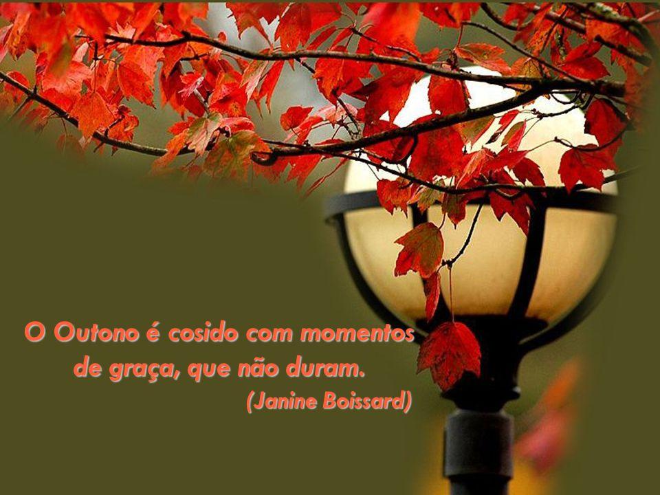 O Outono é cosido com momentos de graça, que não duram. (Janine Boissard) (Janine Boissard)