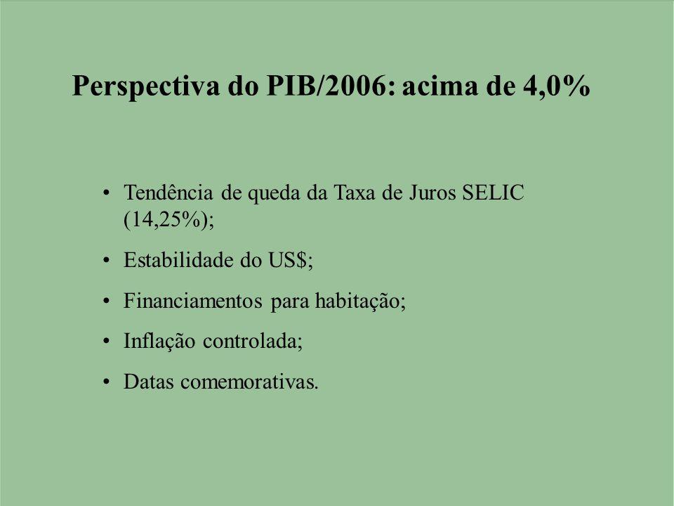Perspectiva do PIB/2006: acima de 4,0% •Tendência de queda da Taxa de Juros SELIC (14,25%); •Estabilidade do US$; •Financiamentos para habitação; •Inflação controlada; •Datas comemorativas.
