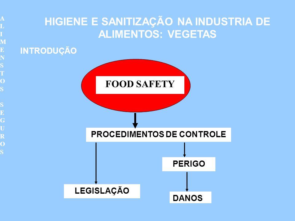 FOOD SAFETY PROCEDIMENTOS DE CONTROLE LEGISLAÇÃO PERIGO DANOS HIGIENE E SANITIZAÇÃO NA INDUSTRIA DE ALIMENTOS: VEGETAS INTRODUÇÃO ALIMENSTOS SEGUROSAL