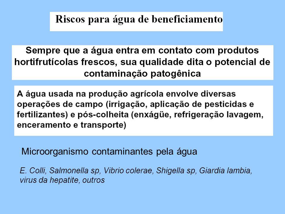 Microorganismo contaminantes pela água E. Colli, Salmonella sp, Vibrio colerae, Shigella sp, Giardia lambia, virus da hepatite, outros