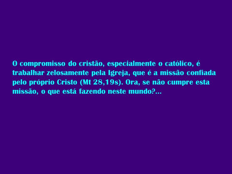 O compromisso do cristão, especialmente o católico, é trabalhar zelosamente pela Igreja, que é a missão confiada pelo próprio Cristo (Mt 28,19s). Ora,