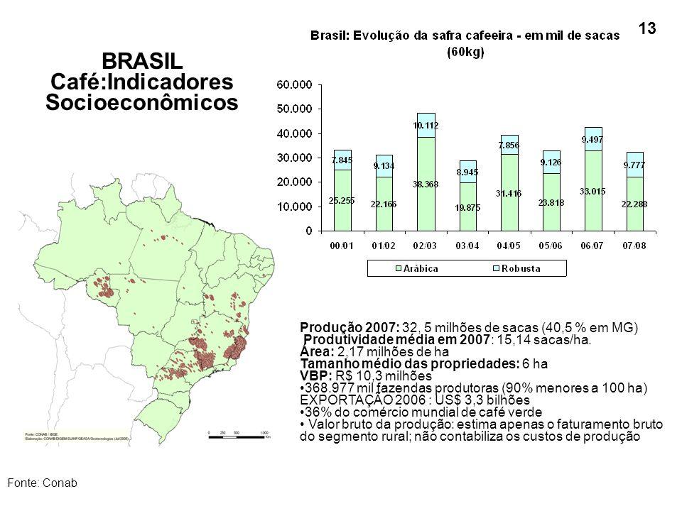 BRASIL Café:Indicadores Socioeconômicos Fonte: Conab Produção 2007: 32, 5 milhões de sacas (40,5 % em MG) Produtividade média em 2007: 15,14 sacas/ha.
