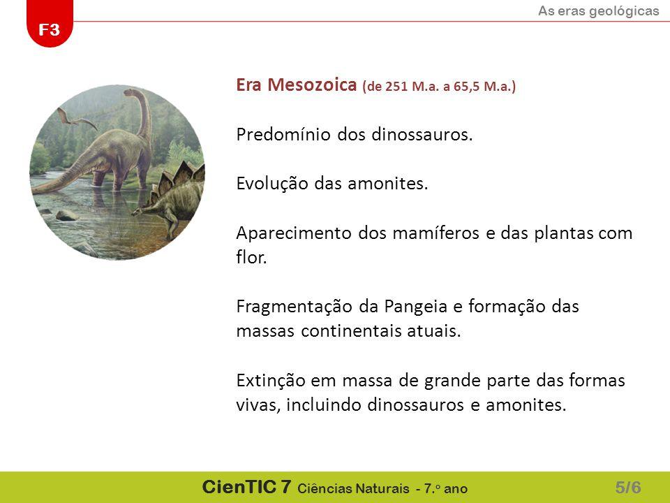 As eras geológicas F3 CienTIC 7 Ciências Naturais - 7. o ano 5/6 Era Mesozoica (de 251 M.a. a 65,5 M.a.) Predomínio dos dinossauros. Evolução das amon