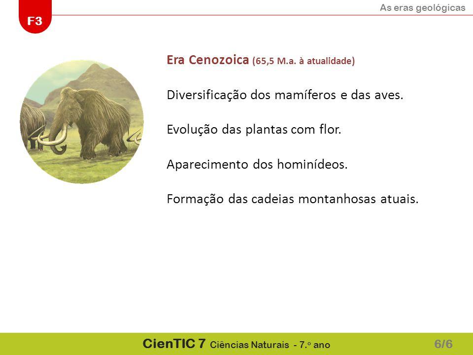 As eras geológicas F3 CienTIC 7 Ciências Naturais - 7. o ano 6/6 Era Cenozoica (65,5 M.a. à atualidade) Diversificação dos mamíferos e das aves. Evolu
