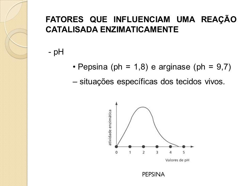 FATORES QUE INFLUENCIAM UMA REAÇÃO CATALISADA ENZIMATICAMENTE - pH • Pepsina (ph = 1,8) e arginase (ph = 9,7) – situações específicas dos tecidos vivo