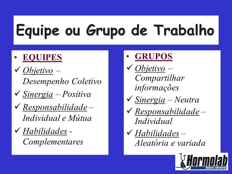 Equipe ou Grupo de Trabalho •EQUIPES  Objetivo – Desempenho Coletivo  Sinergia – Positiva  Responsabilidade – Individual e Mútua  Habilidades - Co