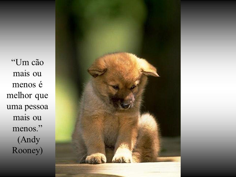 """""""Se os cães não vão para o céu, quando eu morrer, quero ir para onde eles vão""""…"""