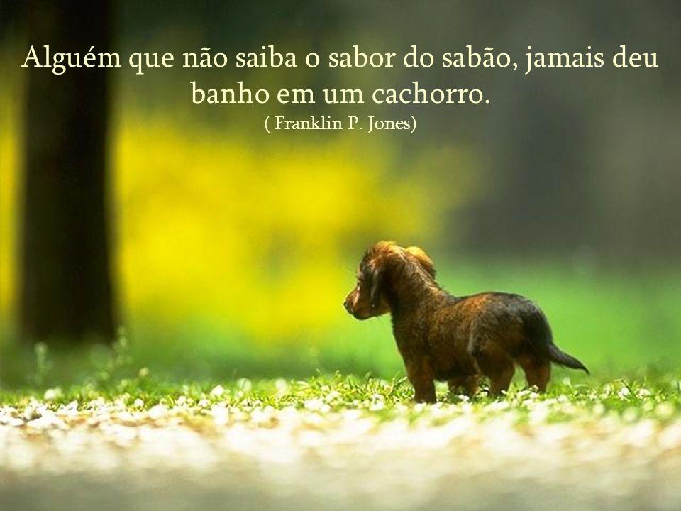 Alguém que não saiba o sabor do sabão, jamais deu banho em um cachorro. ( Franklin P. Jones)