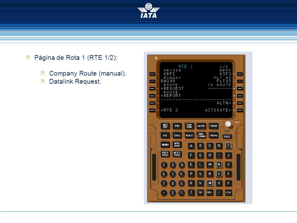  Página de Rota 1 (RTE 1/2):  Company Route (manual).  Datalink Request.
