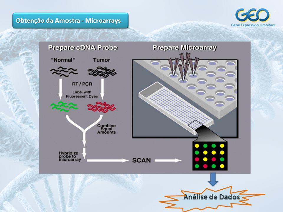 Obtenção da Amostra - Microarrays Análise de Dados