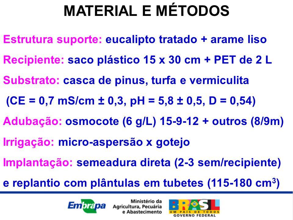 MATERIAL E MÉTODOS Estrutura suporte: eucalipto tratado + arame liso Recipiente: saco plástico 15 x 30 cm + PET de 2 L Substrato: casca de pinus, turfa e vermiculita (CE = 0,7 mS/cm ± 0,3, pH = 5,8 ± 0,5, D = 0,54) Adubação: osmocote (6 g/L) 15-9-12 + outros (8/9m) Irrigação: micro-aspersão x gotejo Implantação: semeadura direta (2-3 sem/recipiente) e replantio com plântulas em tubetes (115-180 cm 3 )