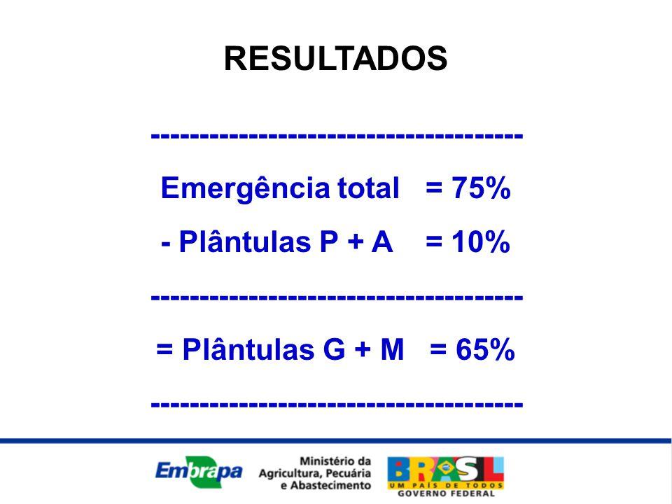 RESULTADOS -------------------------------------- Emergência total = 75% - Plântulas P + A = 10% -------------------------------------- = Plântulas G + M = 65% --------------------------------------