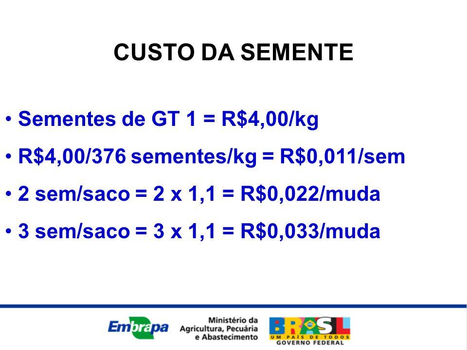 CUSTO DA SEMENTE • Sementes de GT 1 = R$4,00/kg • R$4,00/376 sementes/kg = R$0,011/sem • 2 sem/saco = 2 x 1,1 = R$0,022/muda • 3 sem/saco = 3 x 1,1 =