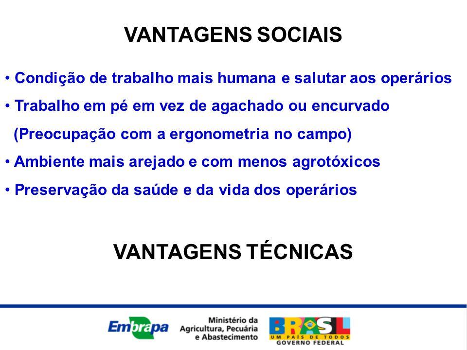 VANTAGENS SOCIAIS • Condição de trabalho mais humana e salutar aos operários • Trabalho em pé em vez de agachado ou encurvado (Preocupação com a ergon