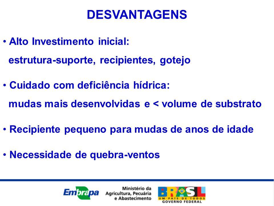 DESVANTAGENS • Alto Investimento inicial: estrutura-suporte, recipientes, gotejo • Cuidado com deficiência hídrica: mudas mais desenvolvidas e < volum