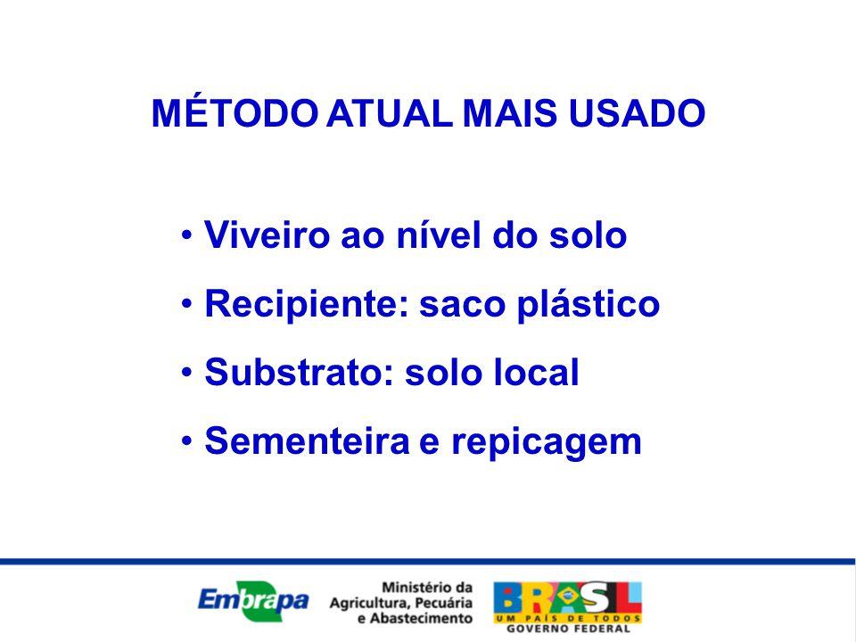 • Viveiro ao nível do solo • Recipiente: saco plástico • Substrato: solo local • Sementeira e repicagem MÉTODO ATUAL MAIS USADO