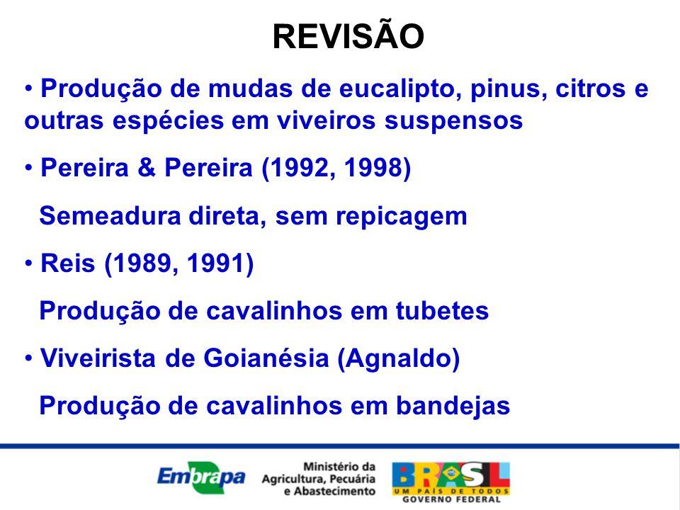 REVISÃO • Produção de mudas de eucalipto, pinus, citros e outras espécies em viveiros suspensos • Pereira & Pereira (1992, 1998) Semeadura direta, sem
