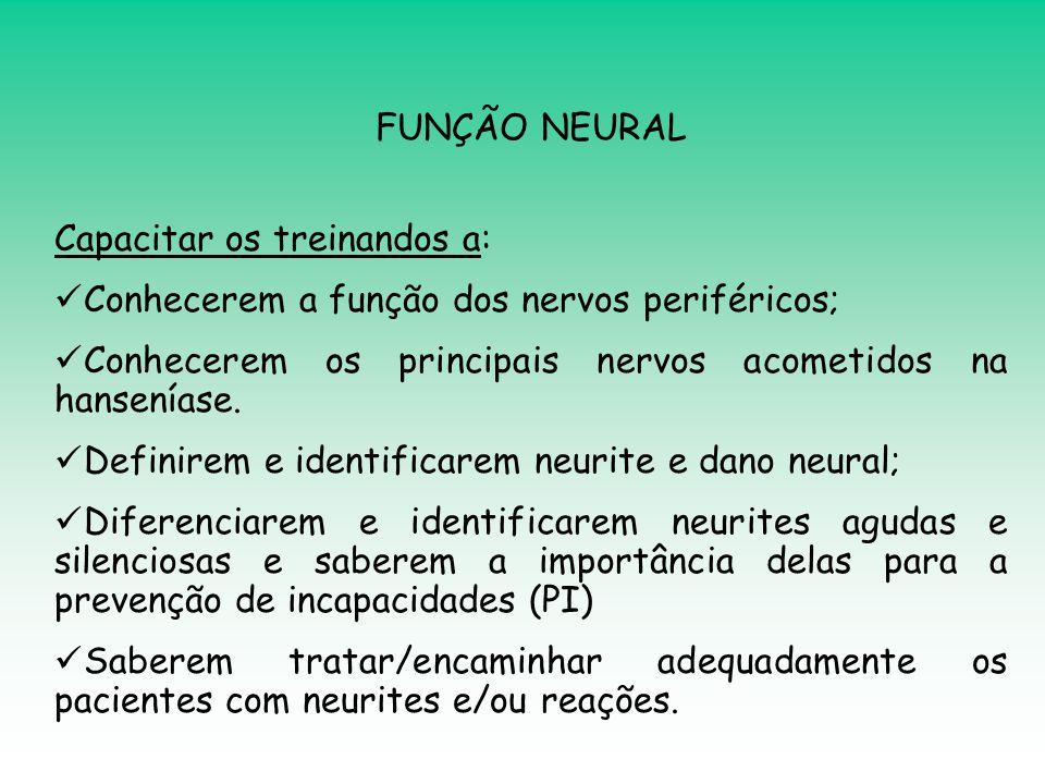 FUNÇÃO NEURAL Capacitar os treinandos a:  Conhecerem a função dos nervos periféricos;  Conhecerem os principais nervos acometidos na hanseníase.  D