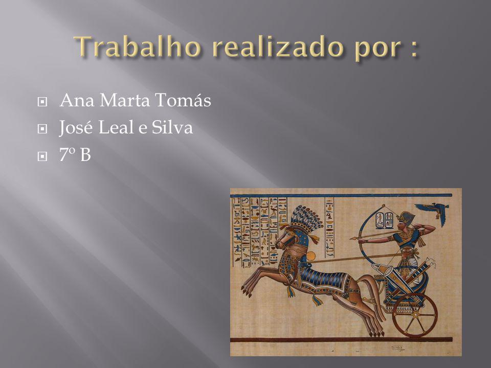  Ana Marta Tomás  José Leal e Silva  7º B