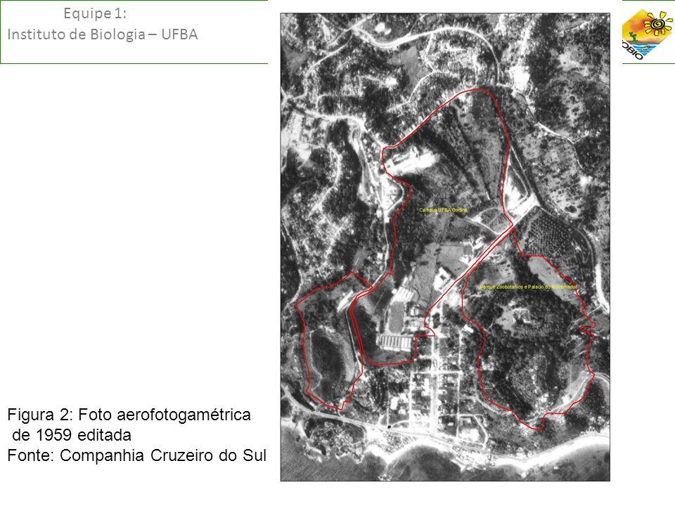 Equipe 1: Instituto de Biologia – UFBA FiF Figura 2: Foto aerofotogamétrica de 1959 editada Fonte: Companhia Cruzeiro do Sul