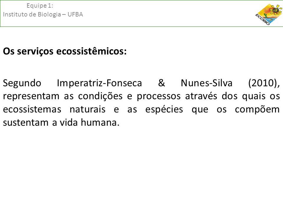 Equipe 1: Instituto de Biologia – UFBA Os serviços ecossistêmicos: Segundo Imperatriz-Fonseca & Nunes-Silva (2010), representam as condições e process