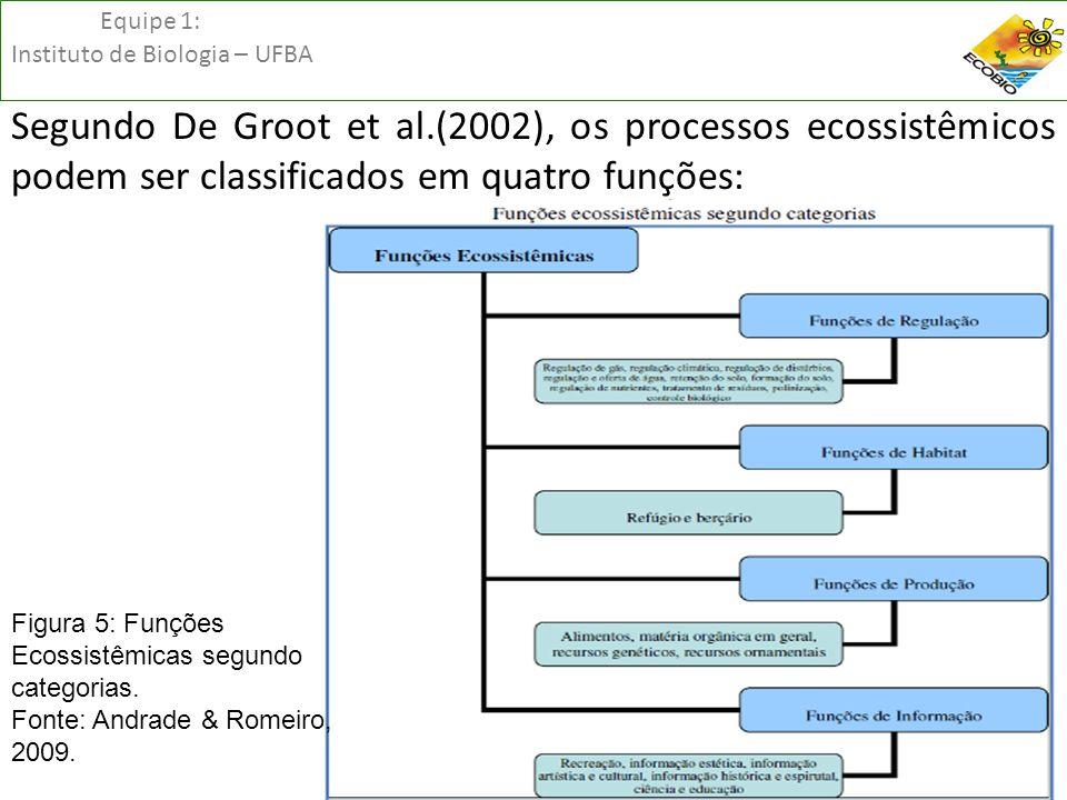 Equipe 1: Instituto de Biologia – UFBA Segundo De Groot et al.(2002), os processos ecossistêmicos podem ser classificados em quatro funções: Figura 5: