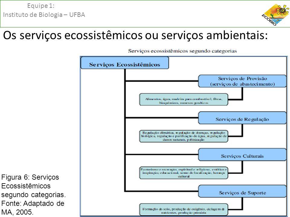 Equipe 1: Instituto de Biologia – UFBA Os serviços ecossistêmicos ou serviços ambientais: Figura 6: Serviços Ecossistêmicos segundo categorias. Fonte: