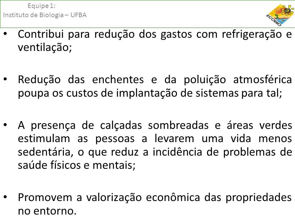 Equipe 1: Instituto de Biologia – UFBA • Contribui para redução dos gastos com refrigeração e ventilação; • Redução das enchentes e da poluição atmosf