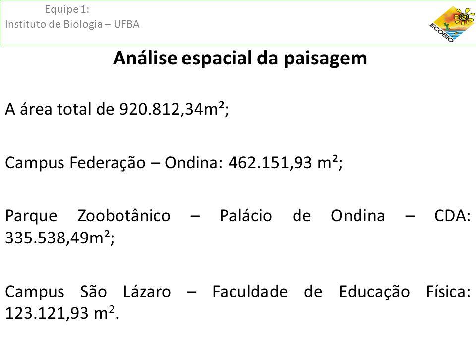 Equipe 1: Instituto de Biologia – UFBA Análise espacial da paisagem A área total de 920.812,34m²; Campus Federação – Ondina: 462.151,93 m²; Parque Zoo