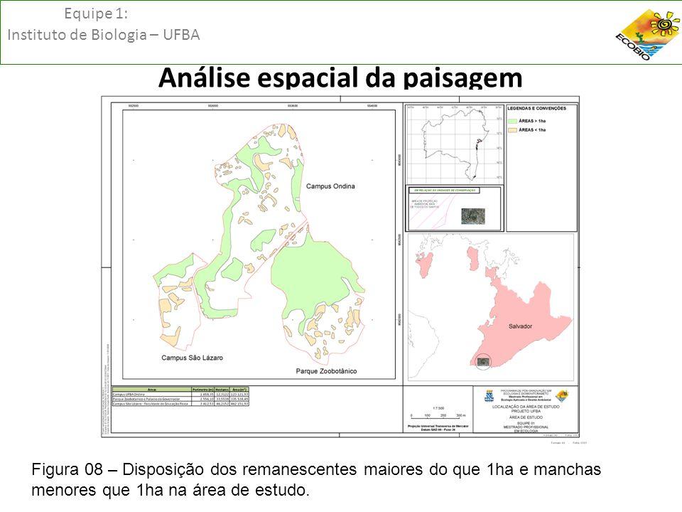 Equipe 1: Instituto de Biologia – UFBA Análise espacial da paisagem Figura 08 – Disposição dos remanescentes maiores do que 1ha e manchas menores que