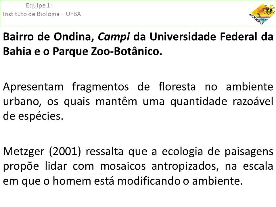 Equipe 1: Instituto de Biologia – UFBA Bairro de Ondina, Campi da Universidade Federal da Bahia e o Parque Zoo-Botânico. Apresentam fragmentos de flor