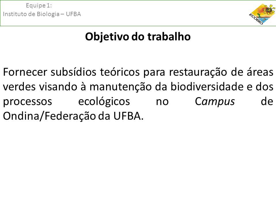 Equipe 1: Instituto de Biologia – UFBA Descrição dos Serviços ambientaisBeneficiários PC* - PE** - BIO*** Serviços de Suporte Produção Primária Local - Quantidade total de matéria orgânica fixada pelos seres autótrofos (fotossíntese), fixação do CO 2 PC – PE – BIO Solo - Formação e sustentação do solo pelas raízes da vegetaçãoPC – PE – BIO Ciclagem de nutrientesBIO Disponibilização de habitats e refúgiosBIO Recursos hídricos - Ciclagem da água e favorecimento da infiltração das águas pluviais.PC – PE – BIO Serviços de Provisão Recursos Alimentares - Frutos, sementes entre outrosPC – BIO Serviços de Regulação Climática - Interceptação da radiação solar.