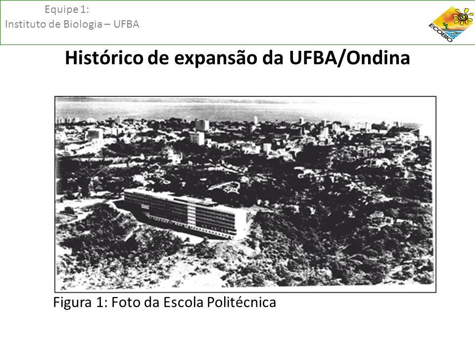 Equipe 1: Instituto de Biologia – UFBA Análise espacial da paisagem Figura 08 – Disposição dos remanescentes maiores do que 1ha e manchas menores que 1ha na área de estudo.