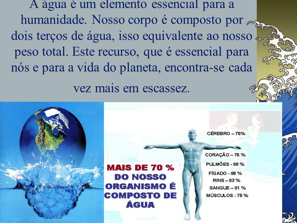 A água é um elemento essencial para a humanidade. Nosso corpo é composto por dois terços de água, isso equivalente ao nosso peso total. Este recurso,