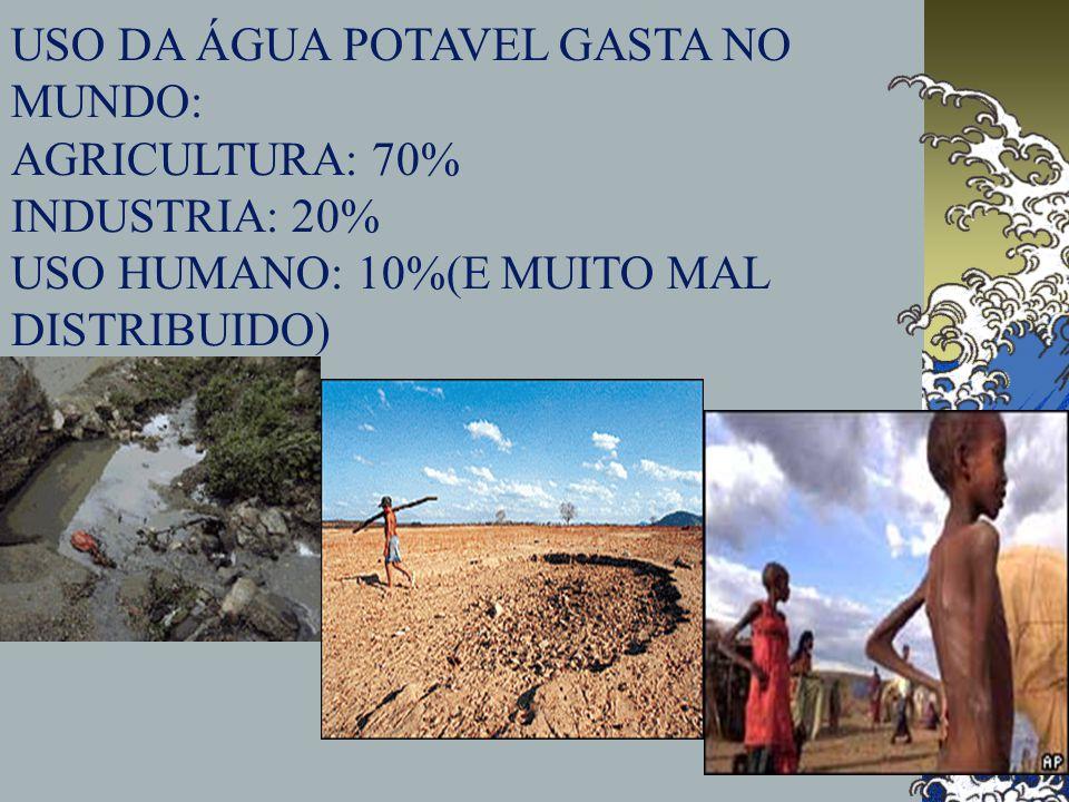 USO DA ÁGUA POTAVEL GASTA NO MUNDO: AGRICULTURA: 70% INDUSTRIA: 20% USO HUMANO: 10%(E MUITO MAL DISTRIBUIDO)