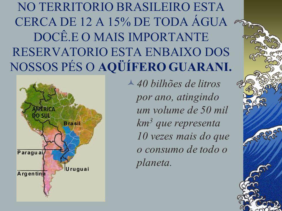 NO TERRITORIO BRASILEIRO ESTA CERCA DE 12 A 15% DE TODA ÁGUA DOCÊ.E O MAIS IMPORTANTE RESERVATORIO ESTA ENBAIXO DOS NOSSOS PÉS O AQÜÍFERO GUARANI.