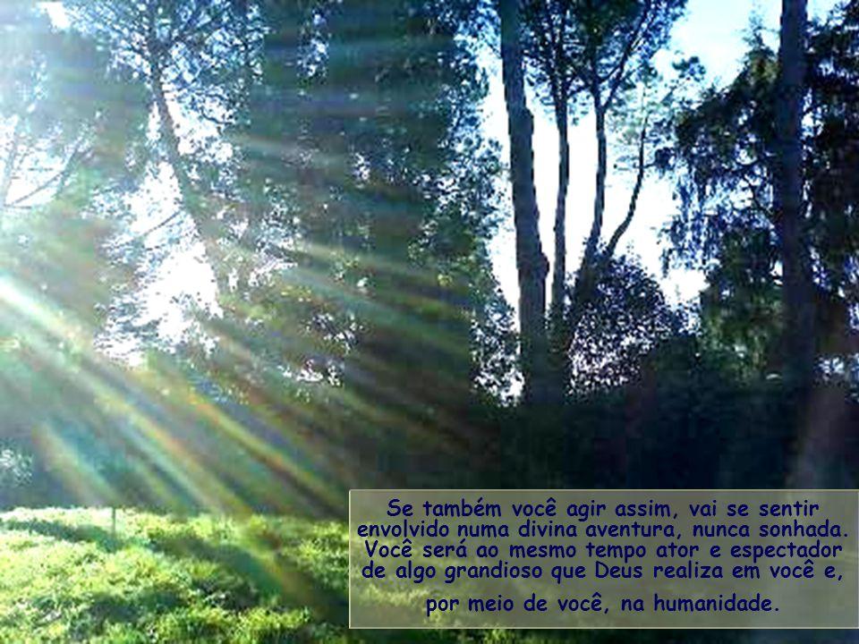 Na vida, o cristão, e também todo homem de boa vontade, é chamado a caminhar rumo ao sol, na luz do seu próprio raio, diferente e distinto de todos os