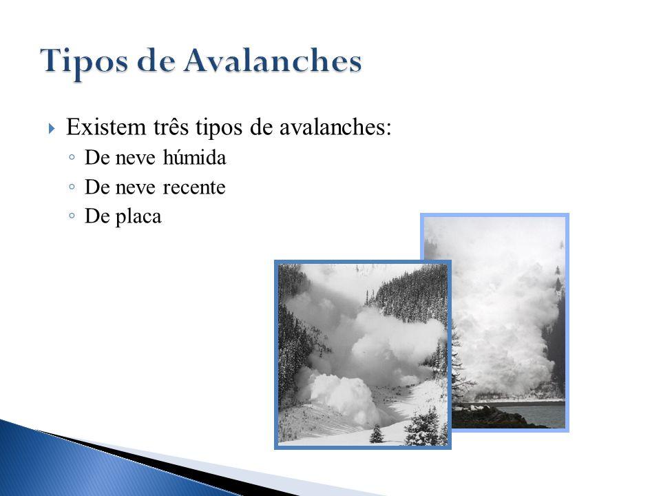  Existem três tipos de avalanches: ◦ De neve húmida ◦ De neve recente ◦ De placa