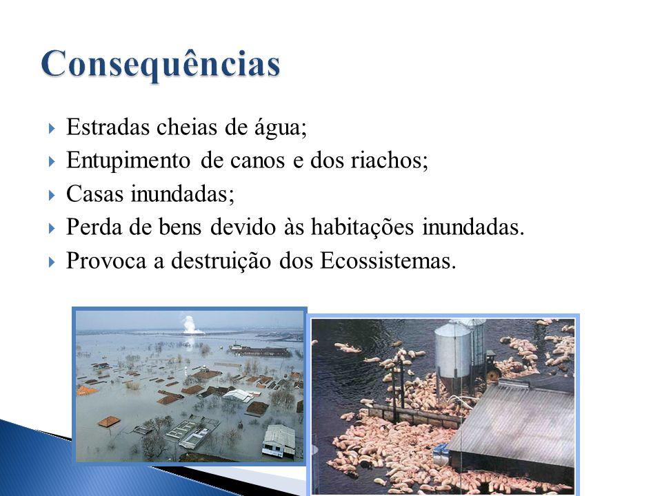  Estradas cheias de água;  Entupimento de canos e dos riachos;  Casas inundadas;  Perda de bens devido às habitações inundadas.  Provoca a destru