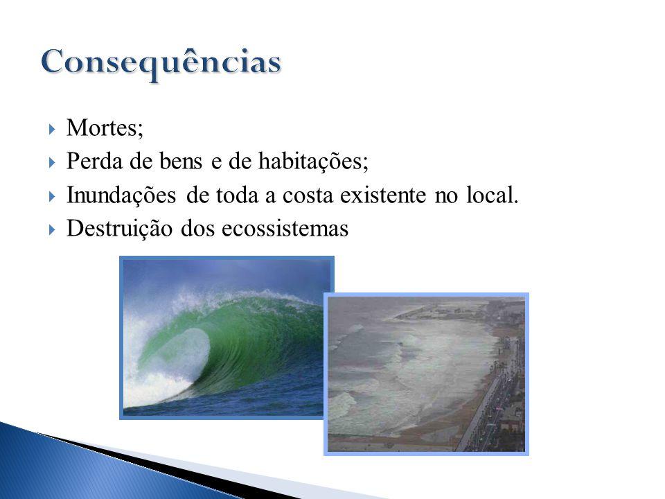  Mortes;  Perda de bens e de habitações;  Inundações de toda a costa existente no local.  Destruição dos ecossistemas