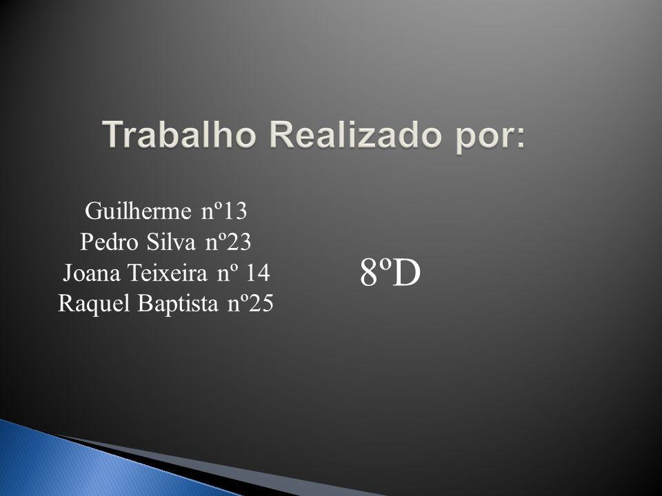 Guilherme nº13 Pedro Silva nº23 Joana Teixeira nº 14 Raquel Baptista nº25 8ºD