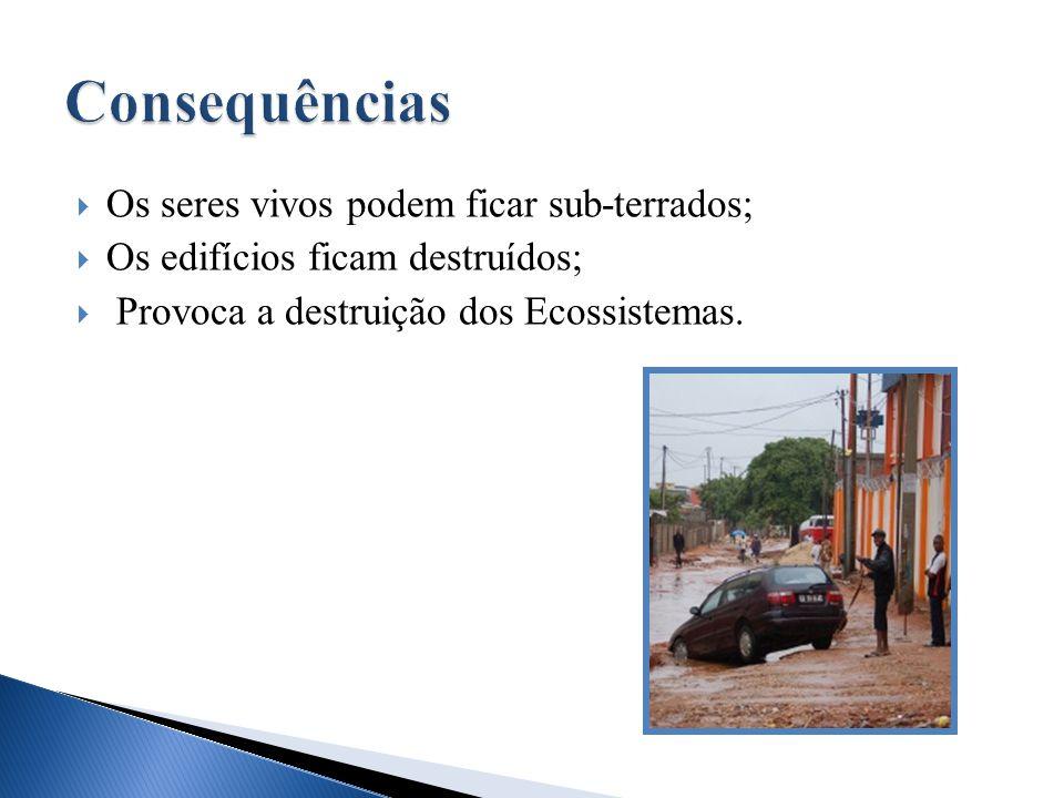  Mortes;  Perda de bens e de habitações;  Inundações de toda a costa existente no local.